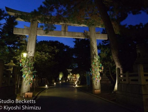 Torii gate #京の七夕 #北野天満宮 #kyoto #kitanotenmangu #lighting #floodlight